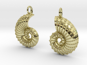 Nautilus Shell Earrings in 18K Gold Plated