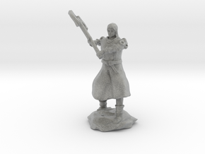 Human Fighter Noblewoman with Greataxe & Chainmail in Metallic Plastic