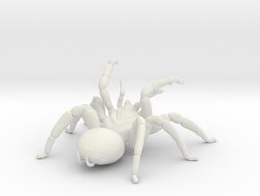Tarantula Attack  in White Natural Versatile Plastic