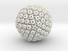 Herpes Simplex virus capsid, radial colour 500kx m in White Natural Versatile Plastic