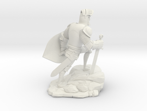TheKnight (Medium) in White Natural Versatile Plastic