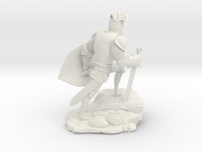 TheKnight (Small) in White Natural Versatile Plastic