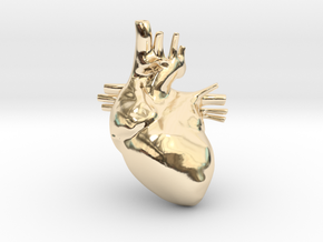 Anatomical Heart Hanger Pendant in 14k Gold Plated Brass
