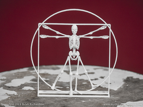 Vitruvian Man Skeleton in White Natural Versatile Plastic