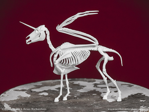 Alicorn Skeleton in White Strong & Flexible
