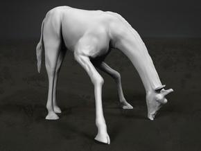 Giraffe 1:22 Drinking Male in White Strong & Flexible