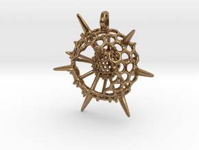 Large Spumellaria Radiolaria Pendant  in Natural Brass