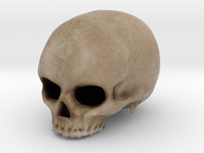 Skull in Color in Full Color Sandstone