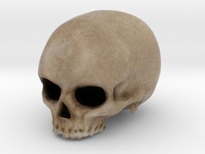 Skull in Color in Full Color Sandstone