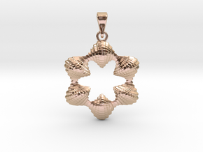 0065 Antisymmetric Torus Pendant (p=6.0) #006 in 14k Rose Gold Plated