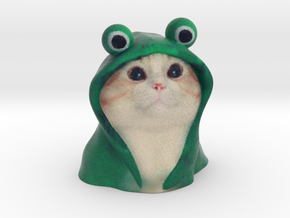 Frog hoodie Cat - internet meme in Full Color Sandstone