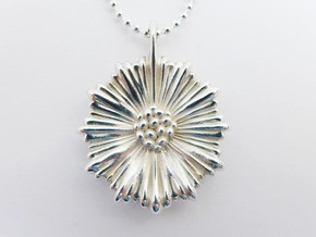 Leptocyathus pendant in Polished Silver