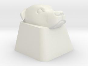 Pitbull Cherry MX Keycap in White Natural Versatile Plastic