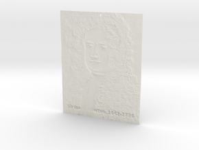 Sir Isaac Newton Shadowgram in White Natural Versatile Plastic