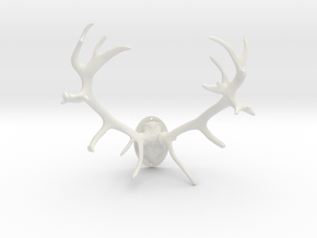 Red Deer Antler Mount 40mm in White Strong & Flexible