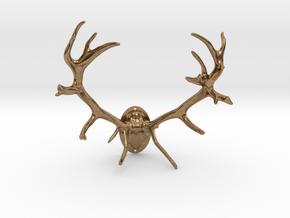 Red Deer Antler Mount - 50mm in Natural Brass