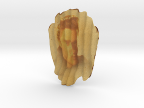 Elvis Chip in Full Color Sandstone