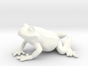 Smiling Frog in White Processed Versatile Plastic