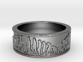 Evolution Ring Size 10 in Fine Detail Polished Silver