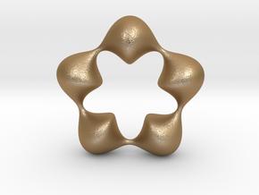 0058 Antisymmetric Torus (p=5.0) #007 in Matte Gold Steel