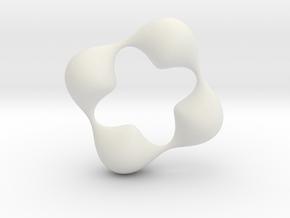 0057 Antisymmetric Torus (p=4.0) #006 in White Natural Versatile Plastic