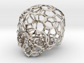 Voronoi Skull [1:0.5] in Rhodium Plated Brass