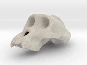 Gorila ♂ cranium in Natural Sandstone