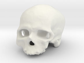 Old man of Crô-Magnon (cranium, real size) in White Natural Versatile Plastic