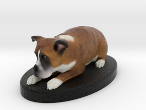 Custom Dog FIgurine - Mikey in Full Color Sandstone