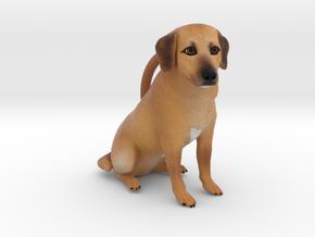 Custom Dog Ornament - Peanut in Full Color Sandstone