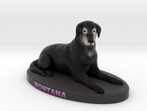 Custom Dog Figurine - Montana in Full Color Sandstone