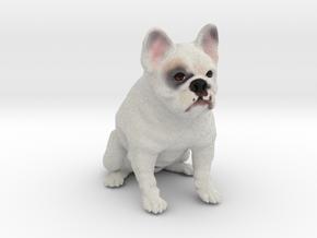 Custom Dog Ornament - Rocky in Full Color Sandstone