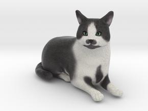 Custom Cat FIgurine - Frank in Full Color Sandstone