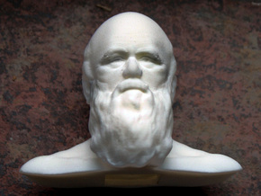 Charles Darwin Bust in Polished Metallic Plastic