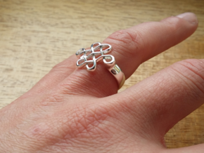 Feng Shui Ring - Size 7 in Premium Silver