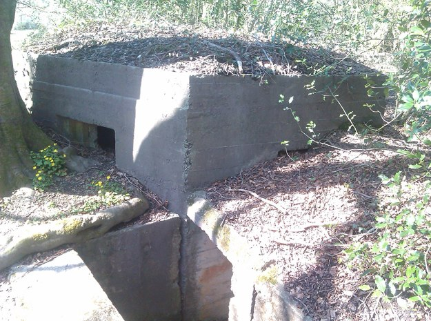 Clyne Valley Type 22 Bunker 3d printed The Prototype