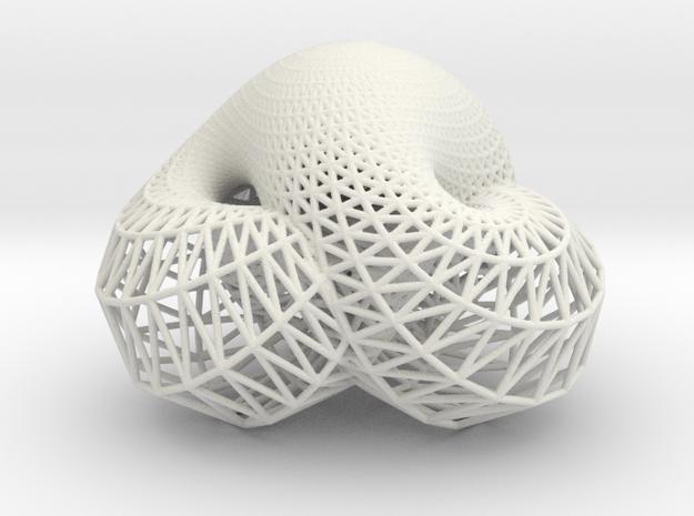 Boy's Surface (Mesh) in White Natural Versatile Plastic