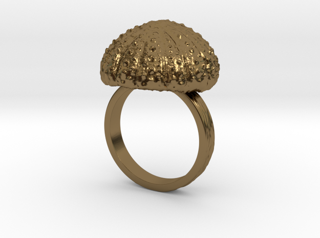 UrchinTop Size12.5 in Polished Bronze