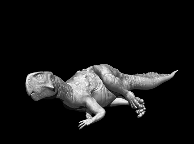 Psittacosaurus Resting 1:12 scale model in White Natural Versatile Plastic