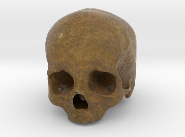 Cranium SF002 in Full Color Sandstone