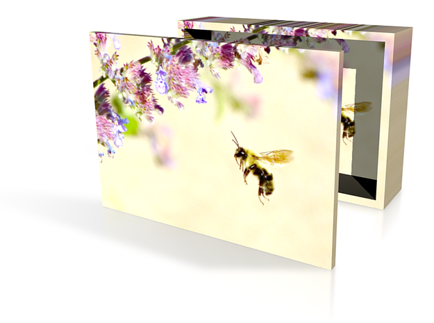 Bee Box 3in 3d printed