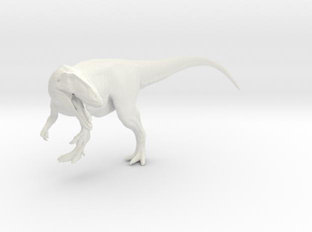 Dinosaur  Carcharodontosaurus 1:40 V1
