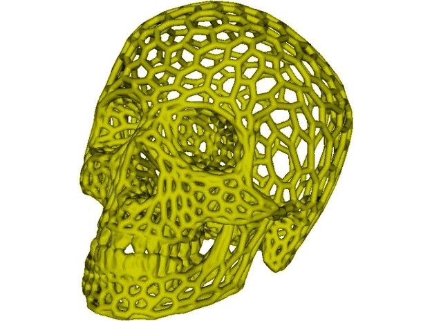 Human skull skeleton perforated sculpture