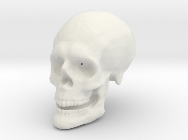 Skull Hollow in White Natural Versatile Plastic