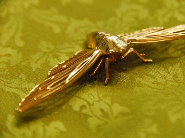 Cicada 3d printed