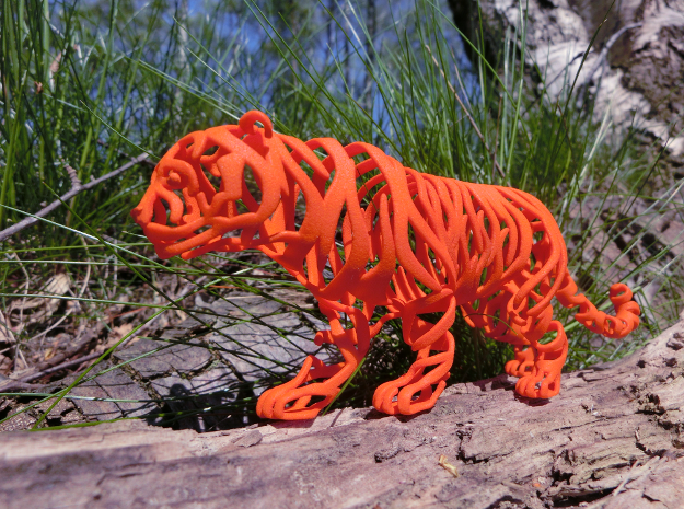 Tiger Stripes and only Stripes in Orange Processed Versatile Plastic