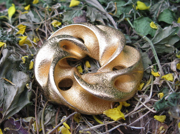 Seedpod of Tacañita  - mobius pendant /sculpture in Polished Gold Steel