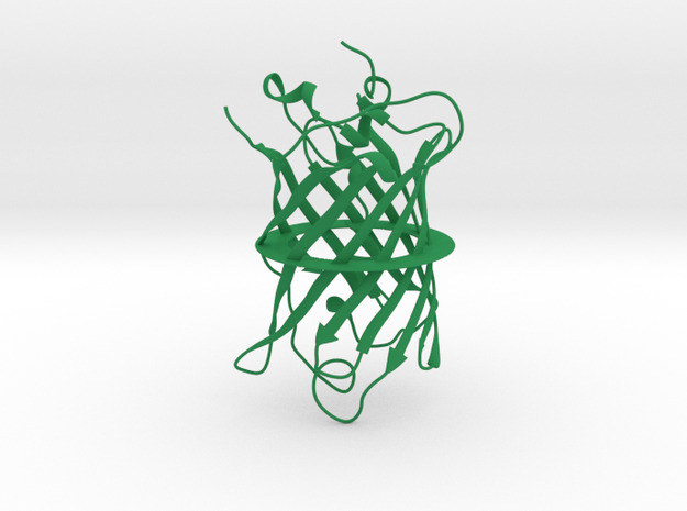 GFP, Large (Green Fluorescent Protein), 1 mm wire 3d printed