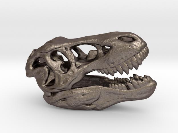 Tyrannosaurus Rex Skull 35mm