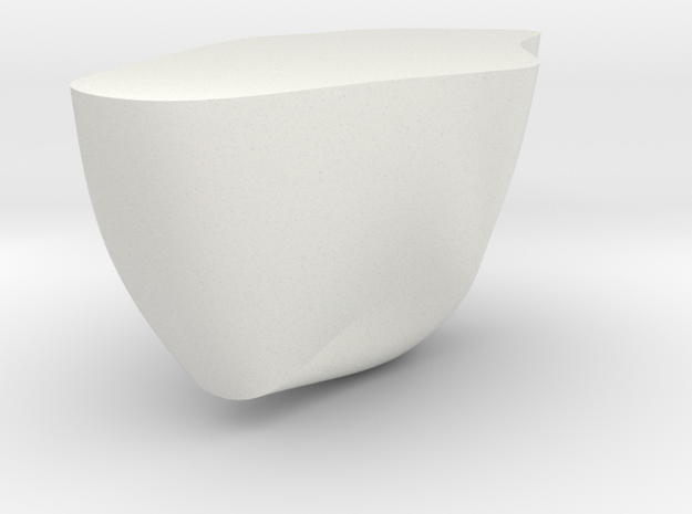 Rock Part 1 - 3D Print - REV1 - 02-23 in White Natural Versatile Plastic